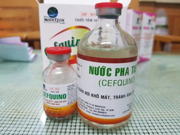 CEFQUINO                       ( Thuốc bột pha tiêm)